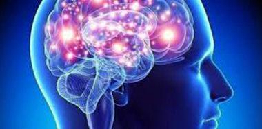 cerebro psi