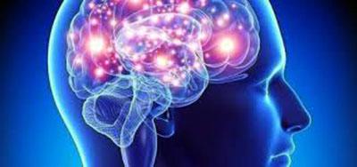 Identificados genes clave en el envejecimiento del cerebro humano