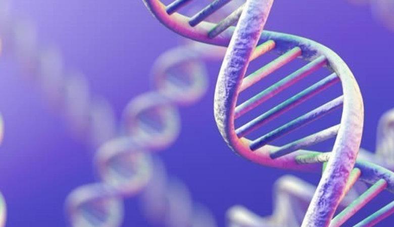 Un importante avance permite estudiar las mutaciones genéticas en cualquier tejido