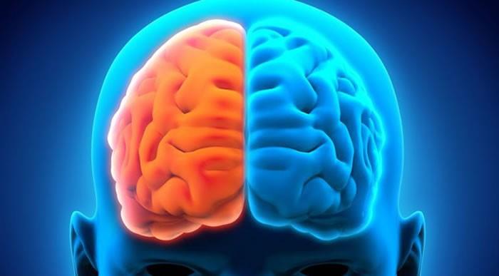 Estudios determinan daños neurológicos que ocasiona el COVID-19
