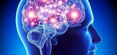 Neurólogos analizan implicación del sistema nervioso en la infección por SARS-CoV-2