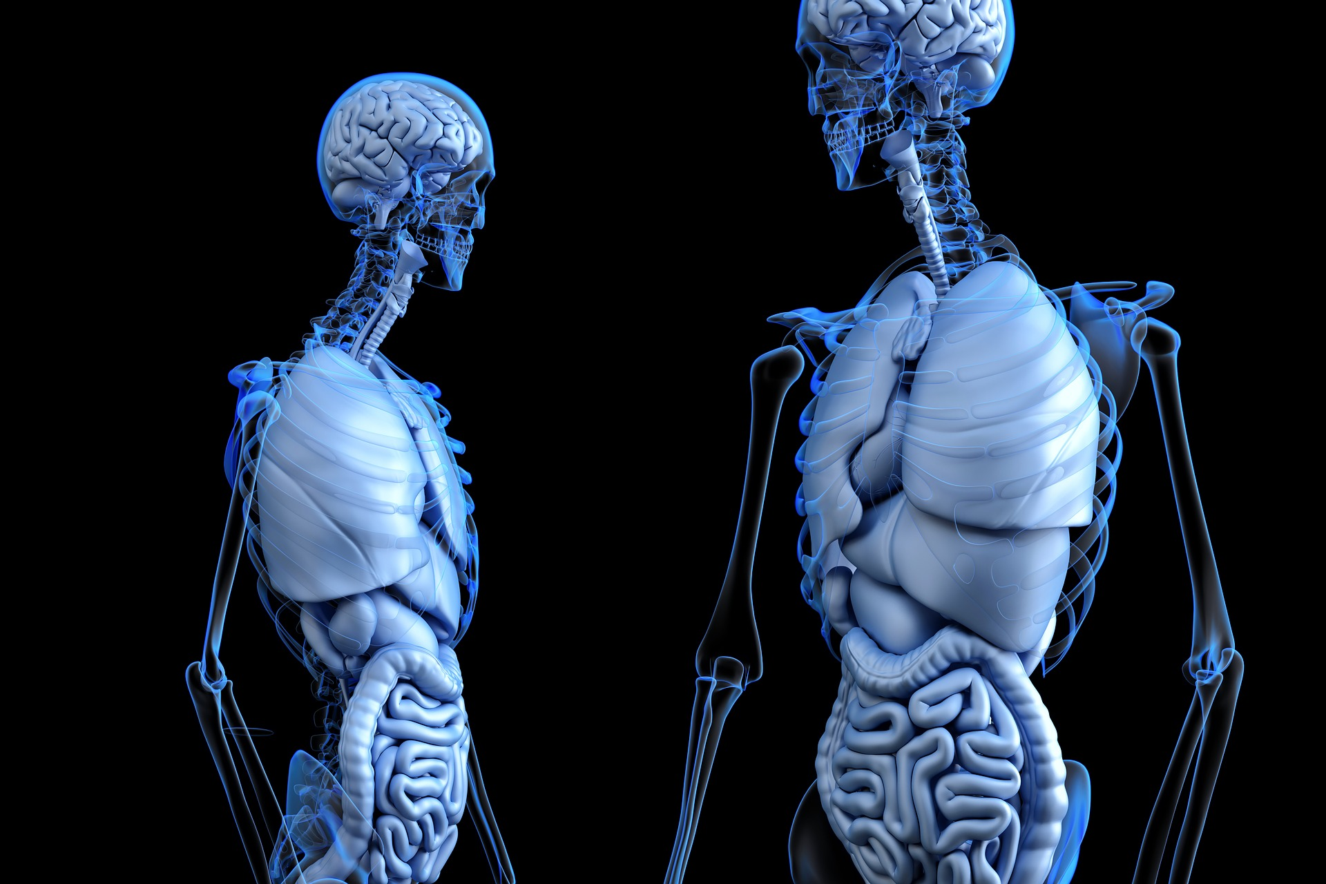 Científicos descubren nuevas células hepáticas capaces de regenerar el tejido