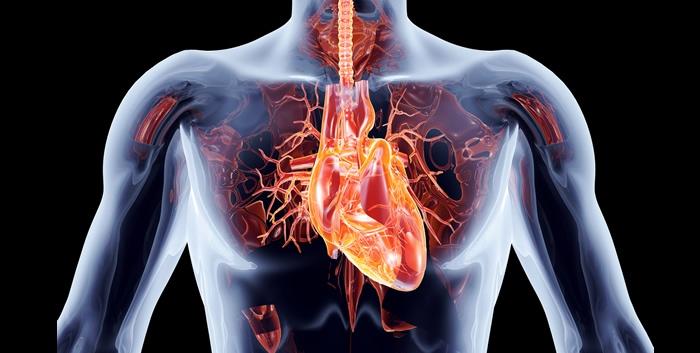 Especialista  analiza implicaciones cardiovasculares en el COVID-19
