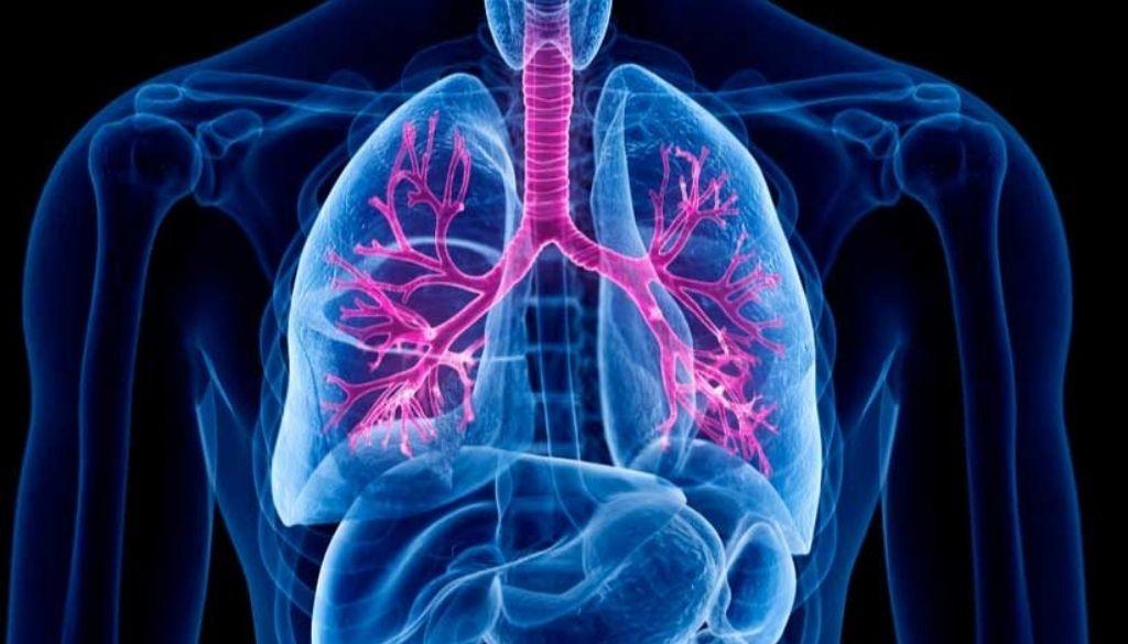 La relación entre dos micronutrientes podría indicar el estado inflamatorio de los pacientes con fibrosis quística