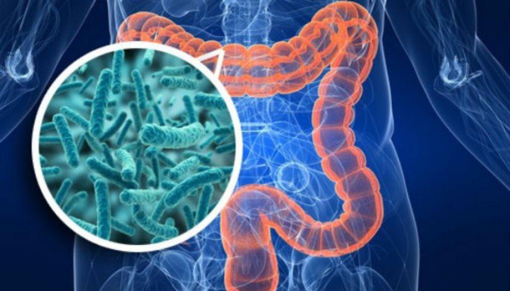 Microbios que inducen la formación de células nerviosas humanas