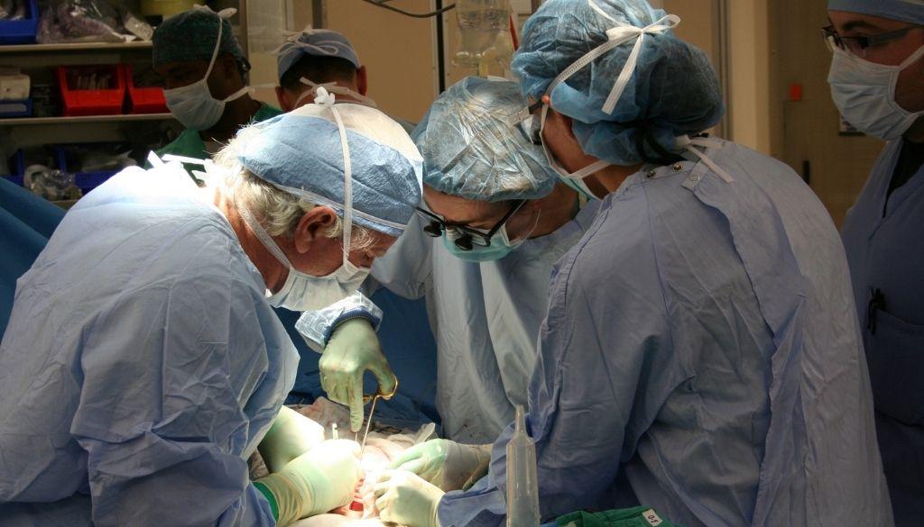 Inauguran programa formación sobre donación de órganos y trasplante para médicos de Latinoamérica