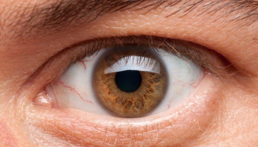 Destacan necesidad de tratar retinopatía diabética para prevenir ceguera